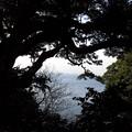 写真: 恋の島