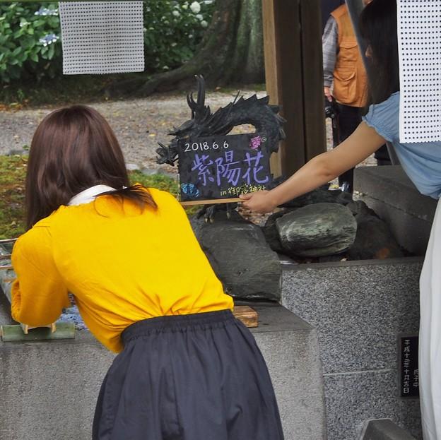 Photos: インスタ映え