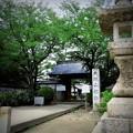 写真: 大塚山性海寺