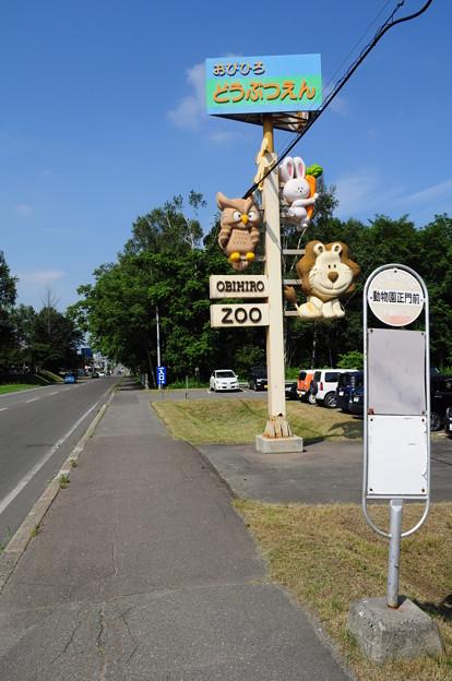 帯広動物園1