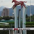 写真: 小倉競馬4