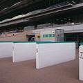 写真: 小倉競馬1