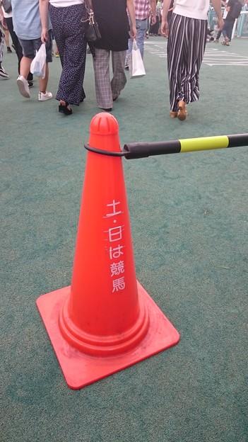 小倉競馬2