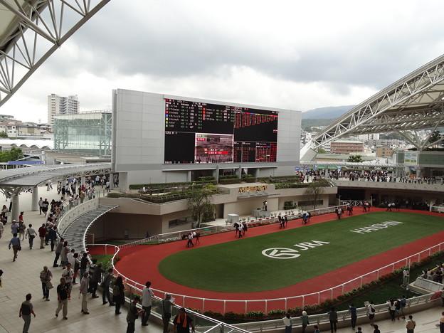 阪神競馬場10