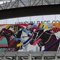 写真: 阪神競馬場7