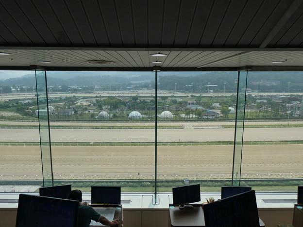 韓国競馬公園 Lets Run Park 3