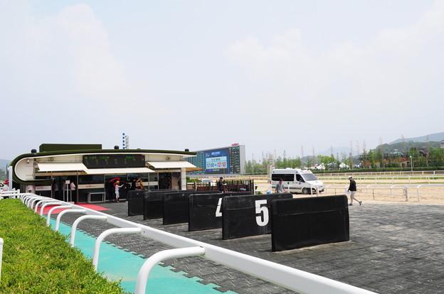 韓国競馬公園 Lets Run Park 14
