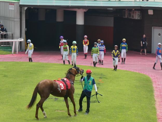 韓国競馬公園 Lets Run Park 30