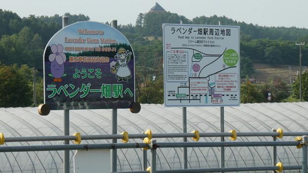 ラベンダー畑駅 (2)
