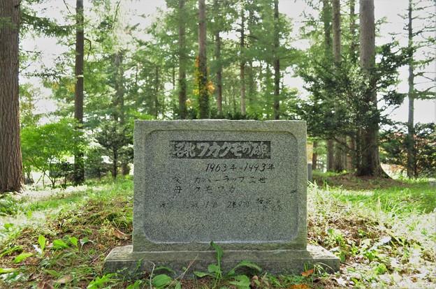 ワカクモのお墓