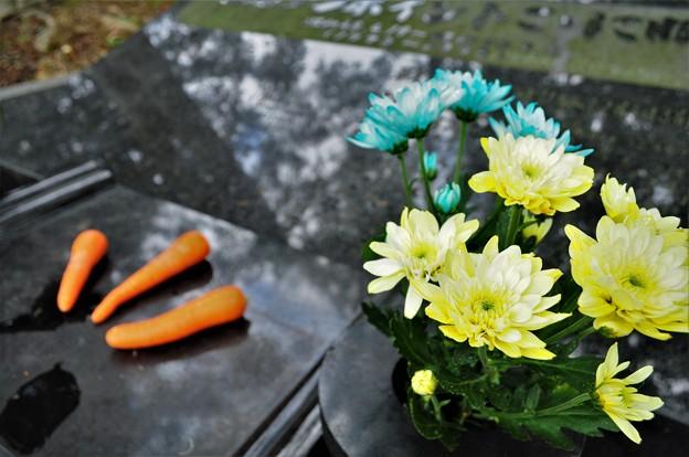 テンポイントのお墓3