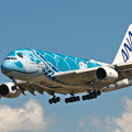 Photos: Airbus A380