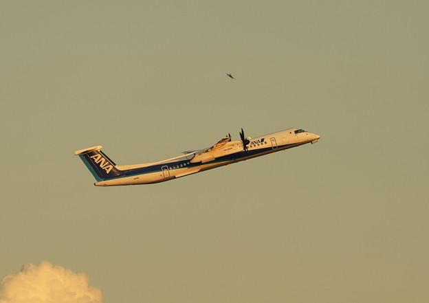 Dash 8-400&F-15JEagle