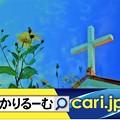Photos: 教会の礼拝ってどういう感じ!? cari.jp