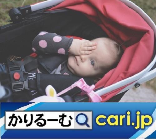 Photos: 保活(ほかつ)春からスタートさせたい!その理由 cari.jp
