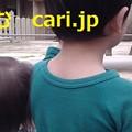 Photos: 量子コンピュータってなんですか? cari.jp