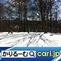 Photos: 2020年2月分 鈴木社長の日誌・日記・備忘 cari.jp