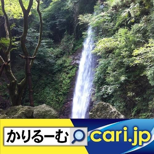 喘息、花粉症、咳き込み マークでお知らせ cari.jp