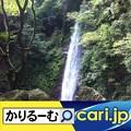 Photos: 喘息、花粉症、咳き込み マークでお知らせ cari.jp