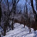 写真: 雪の山道