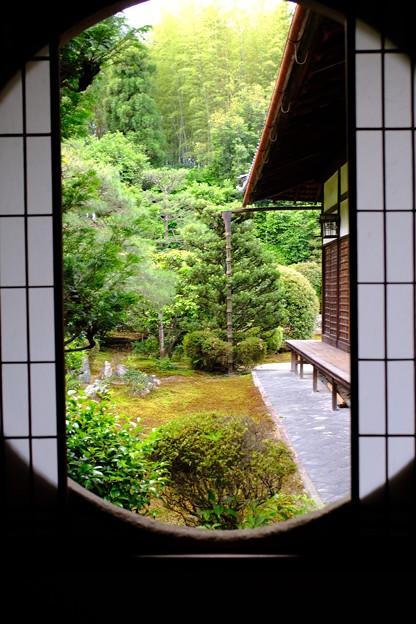 Photos: 新緑の窓