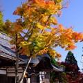 Photos: 西国三十二番 観音正寺