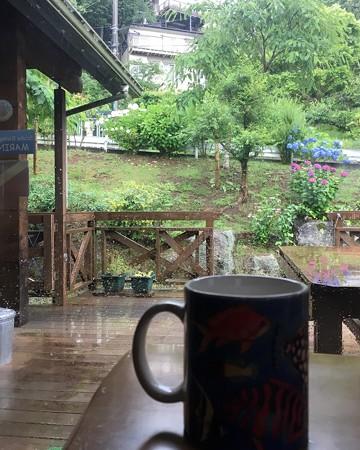 いつもの「森のコーヒー」も何だか美味しく感じます