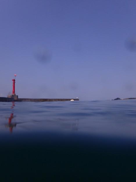 今日も張り切って半水面(静浦の海)