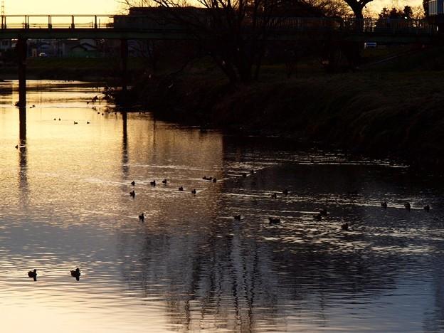 散歩道「夕景」