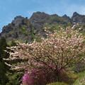 春の妙義山