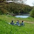 写真: 葉桜の下で