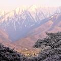 Photos: 大町の朝