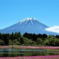 Photos: 晴天の富士