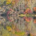 写真: 戸隠の秋真っ盛り