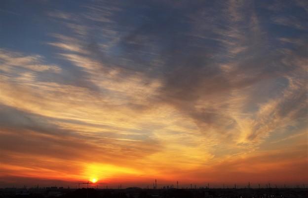夕日「天を舞う」