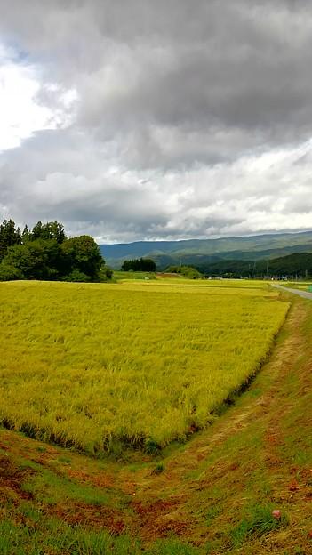 Photos: 秋の八ヶ岳麓