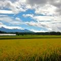 秋の八ヶ岳麗ー2