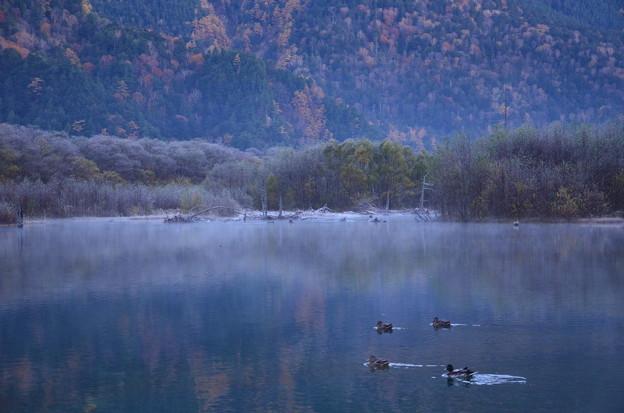 Photos: 初冬の大正池