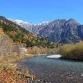 Photos: 秋の終わりに