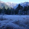 Photos: 冬近し