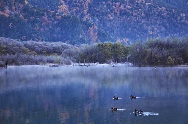晩秋の大正池