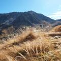 Photos: 秋の立山