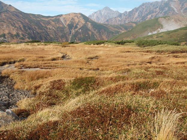 秋の立山ー2
