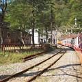 立山トロッコ電車