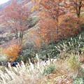 Photos: 秋の登山道