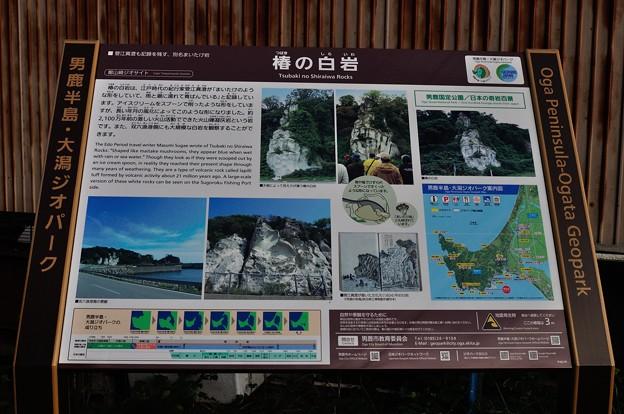 男鹿・椿漁港・グリーンタフ 16-09-19 16-31