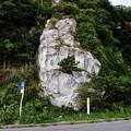 Photos: 男鹿・椿漁港・グリーンタフ 16-09-19 16-31_01