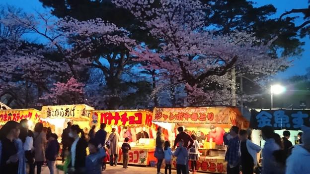 2018 秋田千秋公園 夜桜 12