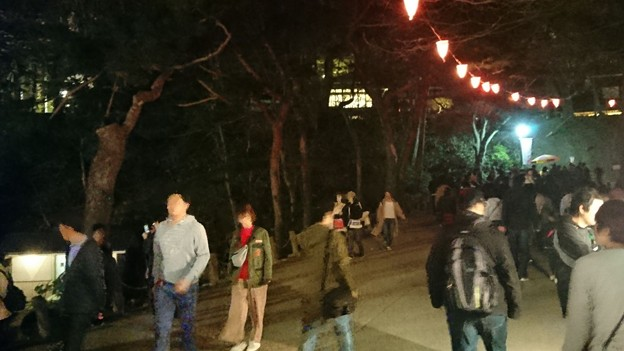 2018 秋田千秋公園 夜桜 20