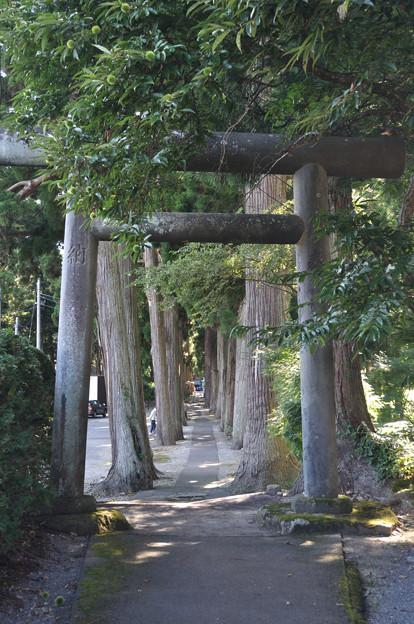 唐松神社1